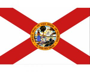 Florida title loans flag logo